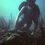 Anchor chain to unnamed wreck in Key Largo Nov 1976