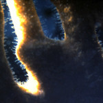 Fire Coral macro closeup showing nemacycts