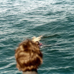 Gulf of Mexico spearfishing 1977